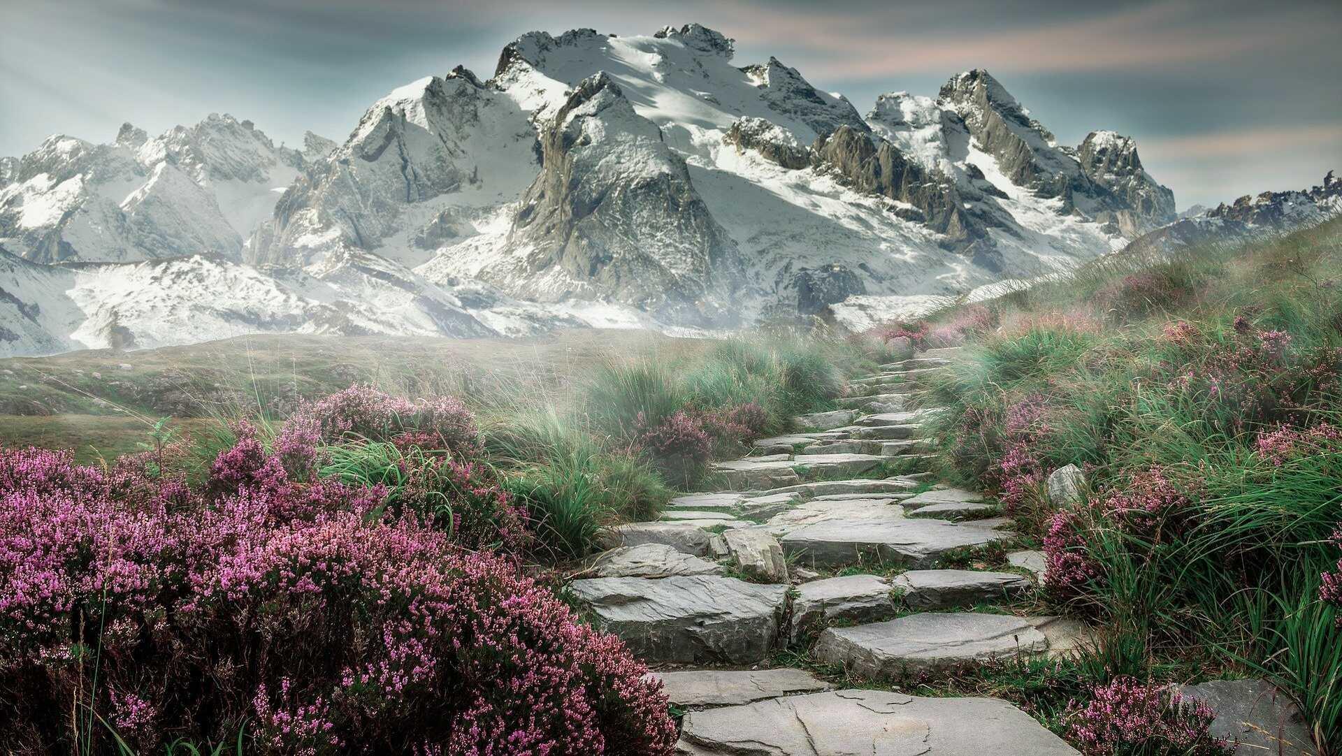 Pourquoi visiter les Dolomites cette année ?