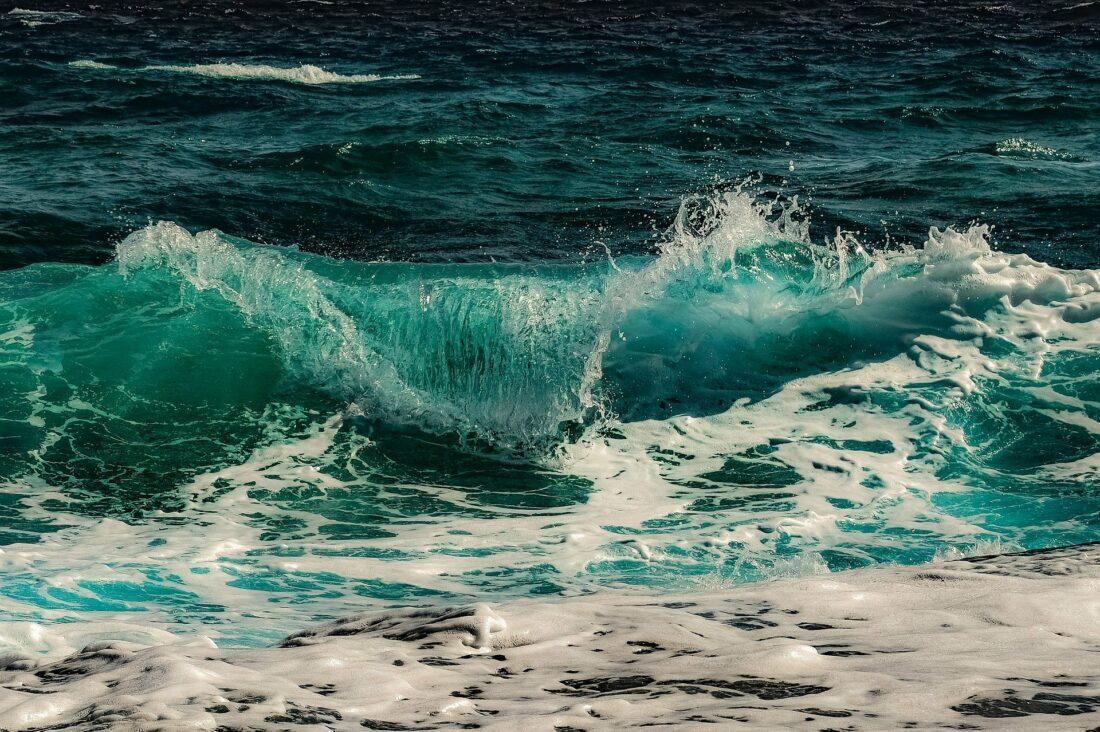 Tout savoir sur les conséquences de nos activités sur les océans