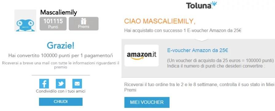 Guadagnare online con Toluna