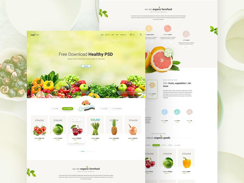 Free Healthy Food Website PSD Template