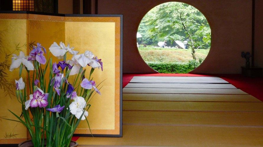 鎌倉・明月院◆境内散歩◆