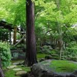鎌倉・覚園寺◆境内散歩◆