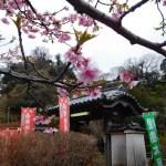 鎌倉・円応寺◆境内散歩◆