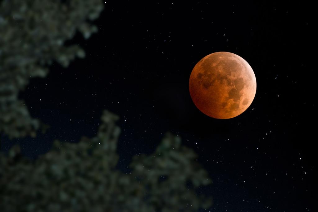 満月の夜のおまじない