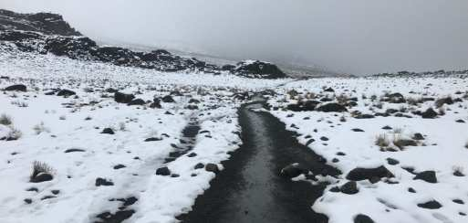 Snowy trails on Mount Kilimanjaro