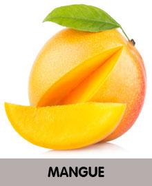 MANGUE-2.jpg