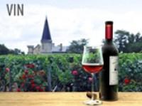 rayon des vins et foire au vin au supermarché Marché Frais