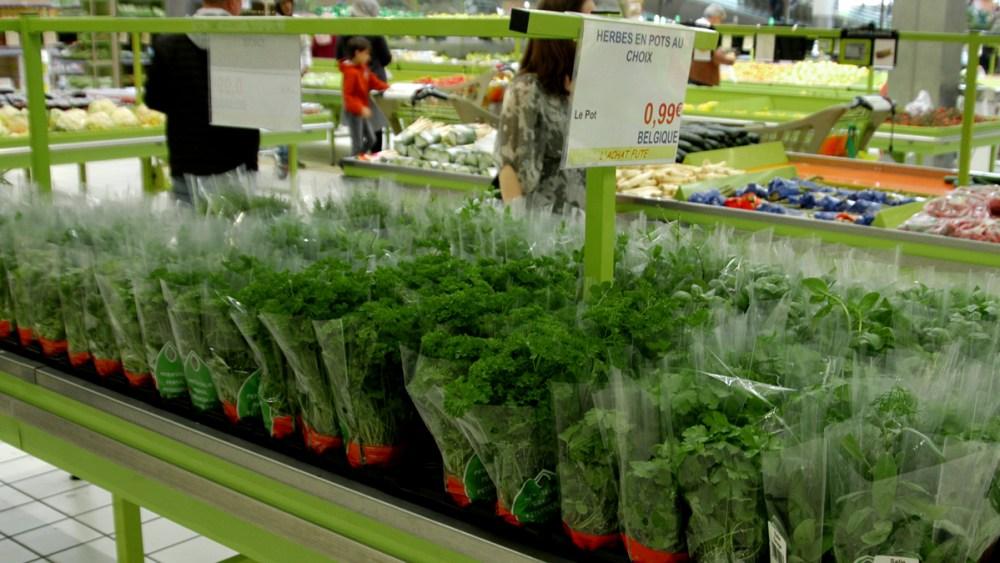 Etale herbes new fruit 1200