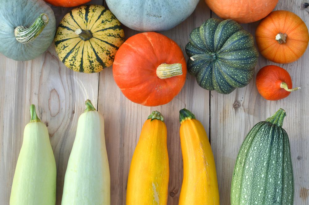 courges Famille des cucurbitacées légumes Marché Frais