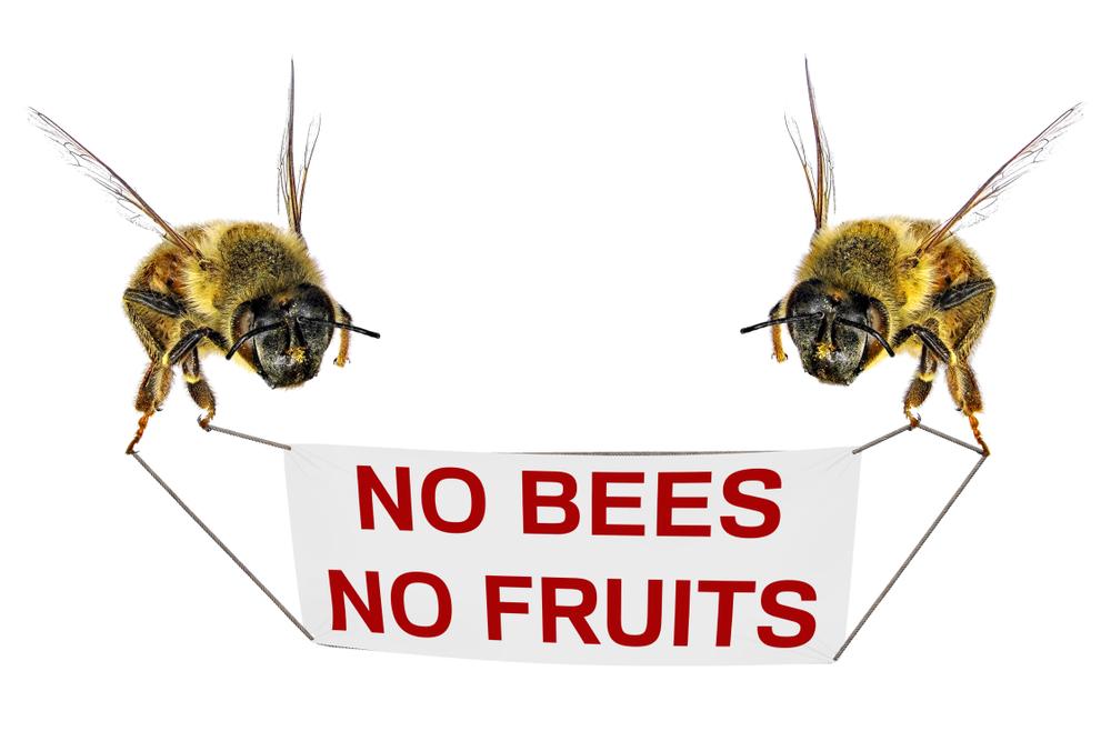 deux abeilles tenant une pancarte : pas d'abeille, pas de fruits