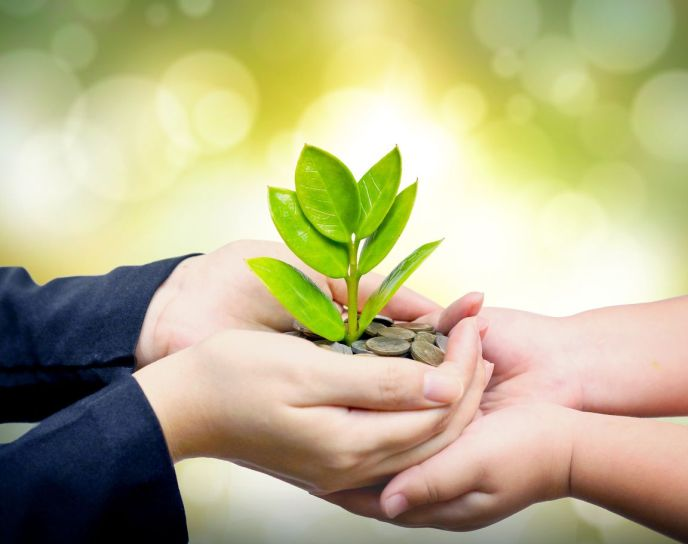 dos manos entregando una planta que nace de unas monedas a un niño