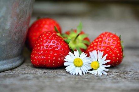 fraises fruit
