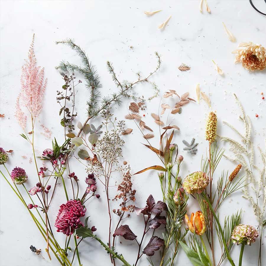 Flores Omassi