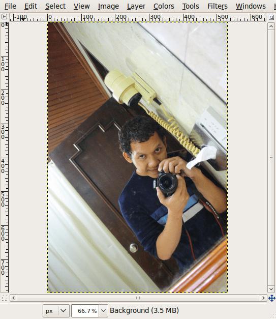 Screenshot-omade.JPG-1.0 (RGB, 1 layer) 533x800 – GIMP-1