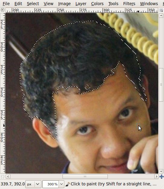 Screenshot-*omade.JPG-1.0 (RGB, 1 layer) 533x800 – GIMP-3