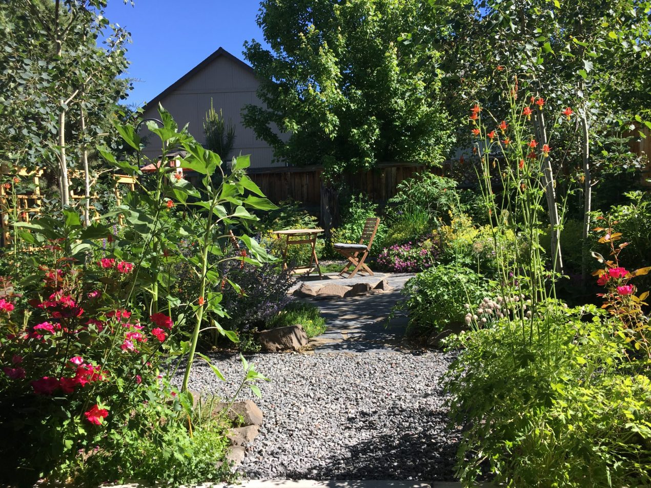 Garden in completion with large aspen trees, perrenials, a stone patio with firepit and rock paths