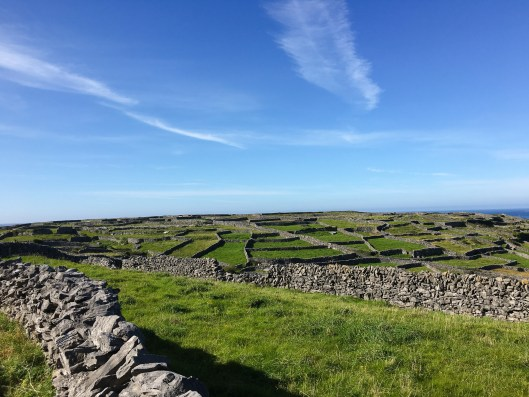 Stone walls and agriculture in Ireland