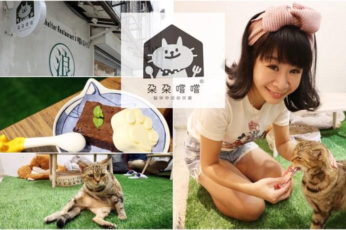 《台北貓咪餐廳》朵朵嚐嚐貓咪中途咖啡廳|對貓咪的真愛不躲藏,更名新出發近大安站