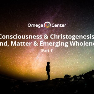 Consciousness & Christogenesis: Mind, Matter & Emerging Wholeness (Part 1)