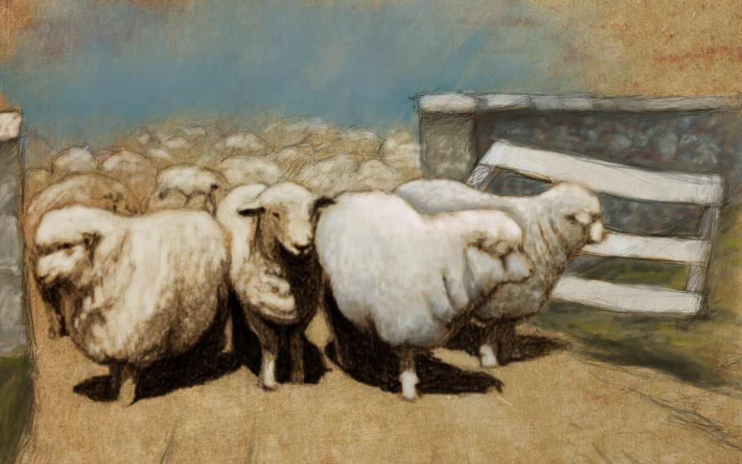 My Shepherd the Breaker (Micah 2:12-13)