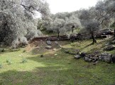 Iassos walkE