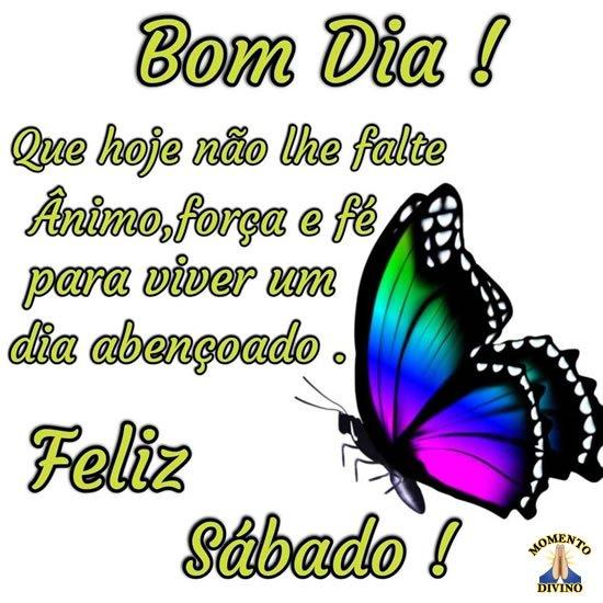 Bom dia e feliz sábado com grande borboleta