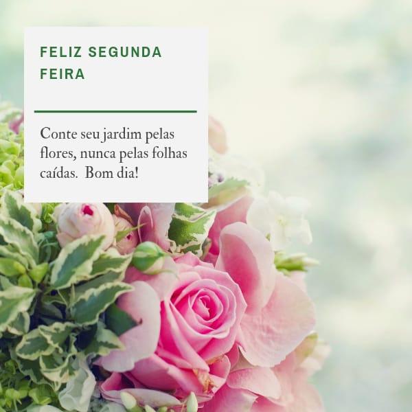Feliz segunda feira florida