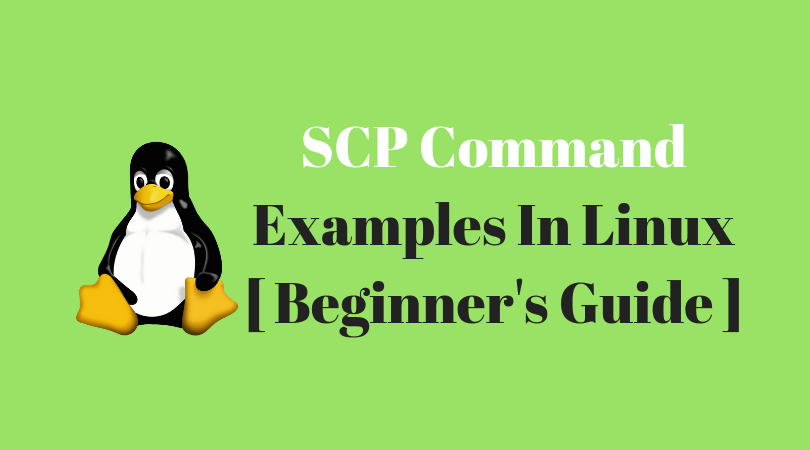 SCP Command Examples In Linux [ Beginner's Guide ]