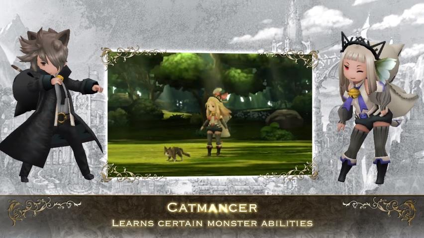 5 Catmancer
