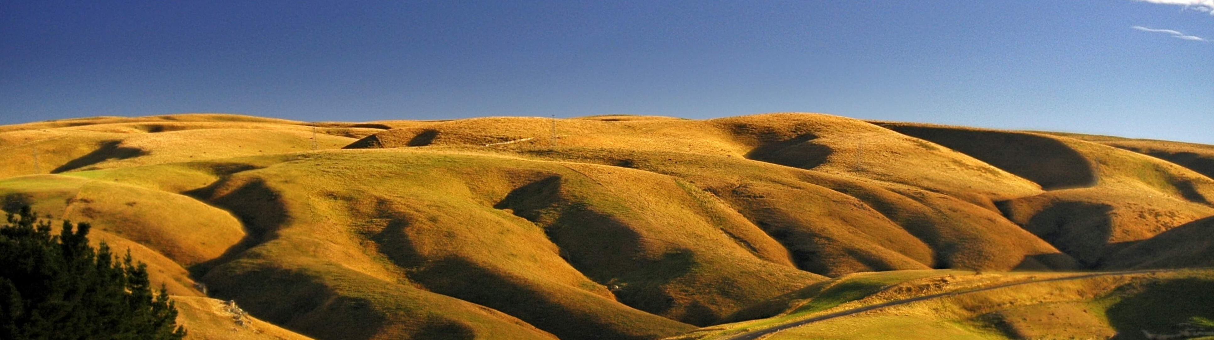 Strath Taieri in Early Autumn by Stephen Murphy
