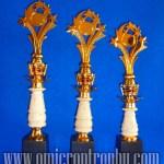Jual Trophy PMA-07M