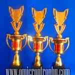 Grosir Piala Murah