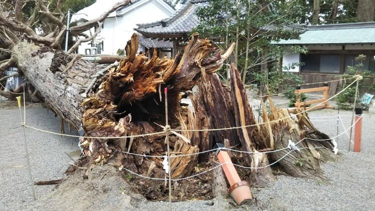 賀茂神社_台風21号被害