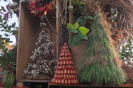 ラコリーナ近江八幡_クリスマスツリー2020