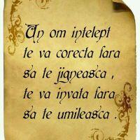 Un înțelept te va corecta fără să te jignească, te va învăța fără să te umilească