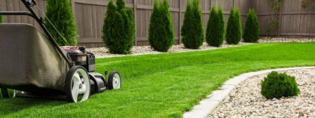 urejanje-okolice-kosnja-trave-cena