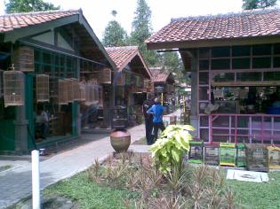 Foto-foto sudut, lorong dan hewan peliharaan yang dijajakan di Pasty Jogja (17)