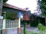 Foto-foto sudut, lorong dan hewan peliharaan yang dijajakan di Pasty Jogja (35)
