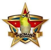 Logo Pleci Mania Indonesia - PCMI