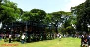 Asyiknya lomba burung di Taman Balekambang Solo (6)
