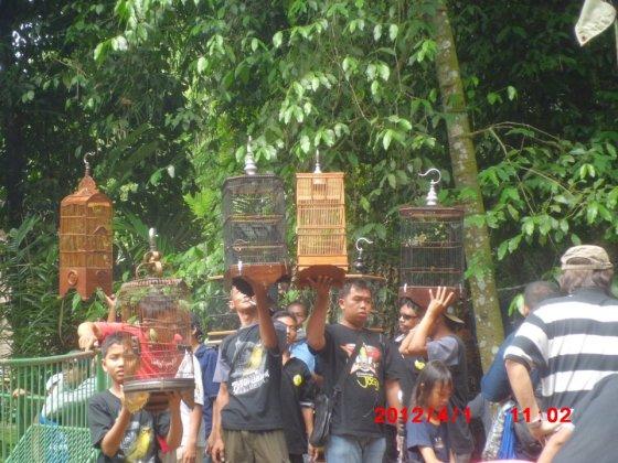 Para Master PCMI siap menggantang burung di Launching Galang Pratama BC