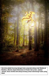 Hercinia adalah burung dengan bulu yang bercahaya dari Medieval Bestiary. Mereka dapat ditemukan di Hutan Hercynian, selatan Jerman