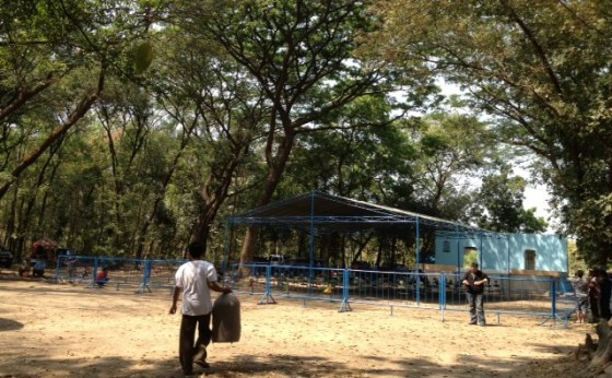 Kerimbunan pohon menaungi arena lomba Danlanud Iswahyudi Cup