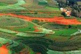 Tanah merah di Kunming membentuk mosaik indah ketika dikombinasi dengan tanaman aneka warna (3)
