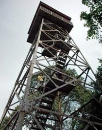 Menara untuk bird watching.