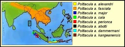 Daerah sebaran burung betet