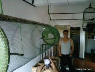 Kandang umbaran murah meriah ala om Agung Wibowo dari Bogor