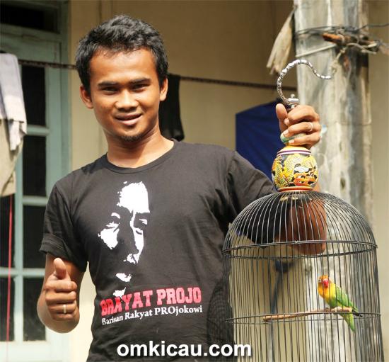 Om Pithek, pengorbit lovebird jawara