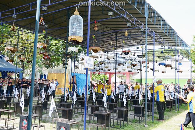 Lomba Burung Berkicau Road to PresCup III di Jogja