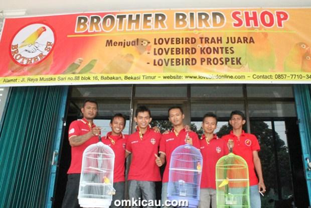 Brother Bird Shop